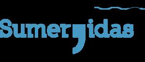 ls-logo-wp-patchtheme-12agosto2017